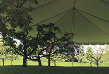 Wedding reception tent rental